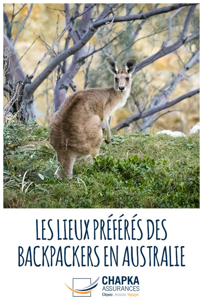BACKPACKERS_AUSTRALIE_2