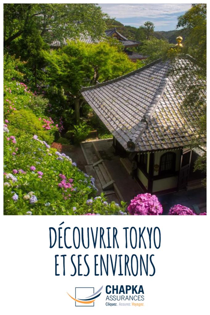 VISITER_TOKYO_2