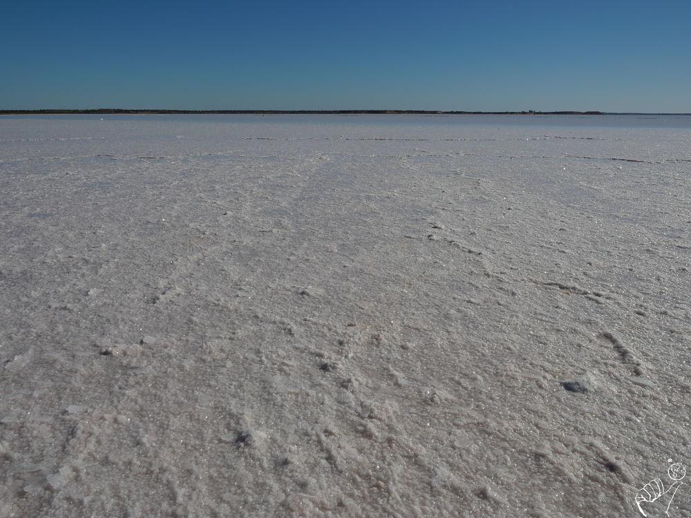 le lac Eyre en Australie