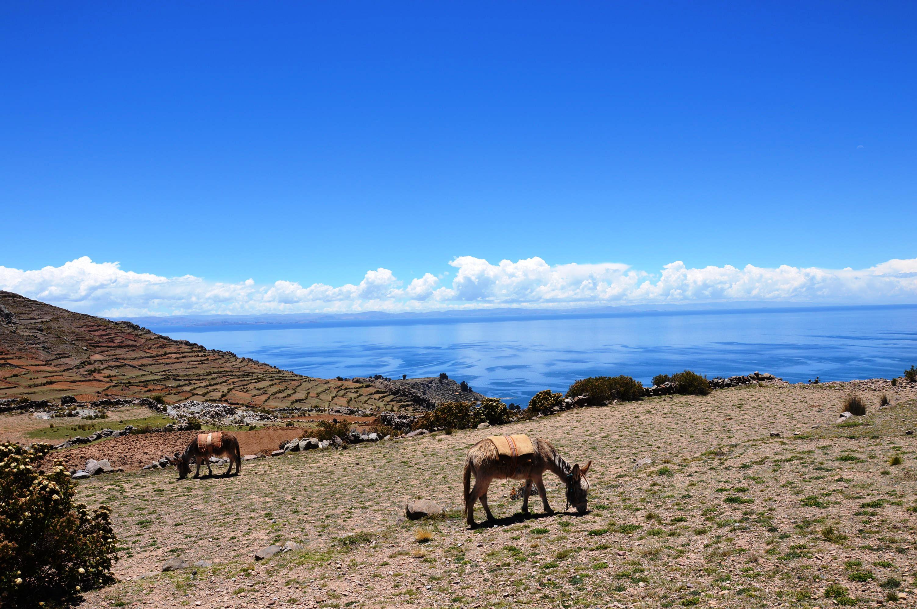 vus sur le lac Titicaca depuis Amantani
