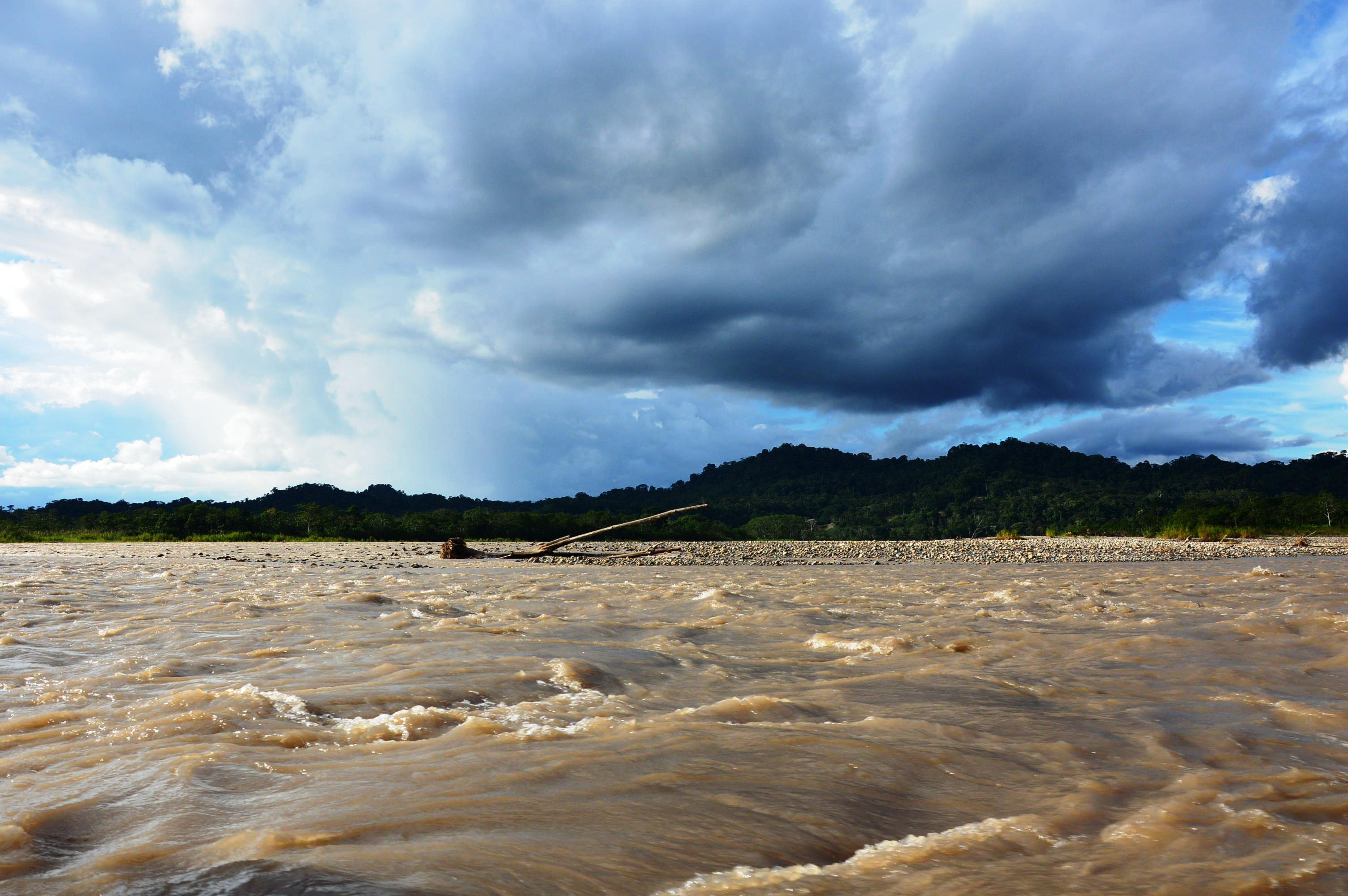 découvrir la jungle equatorienne