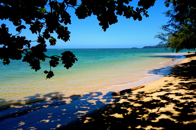 Quelles sont les plus belles plages de Kauai ?