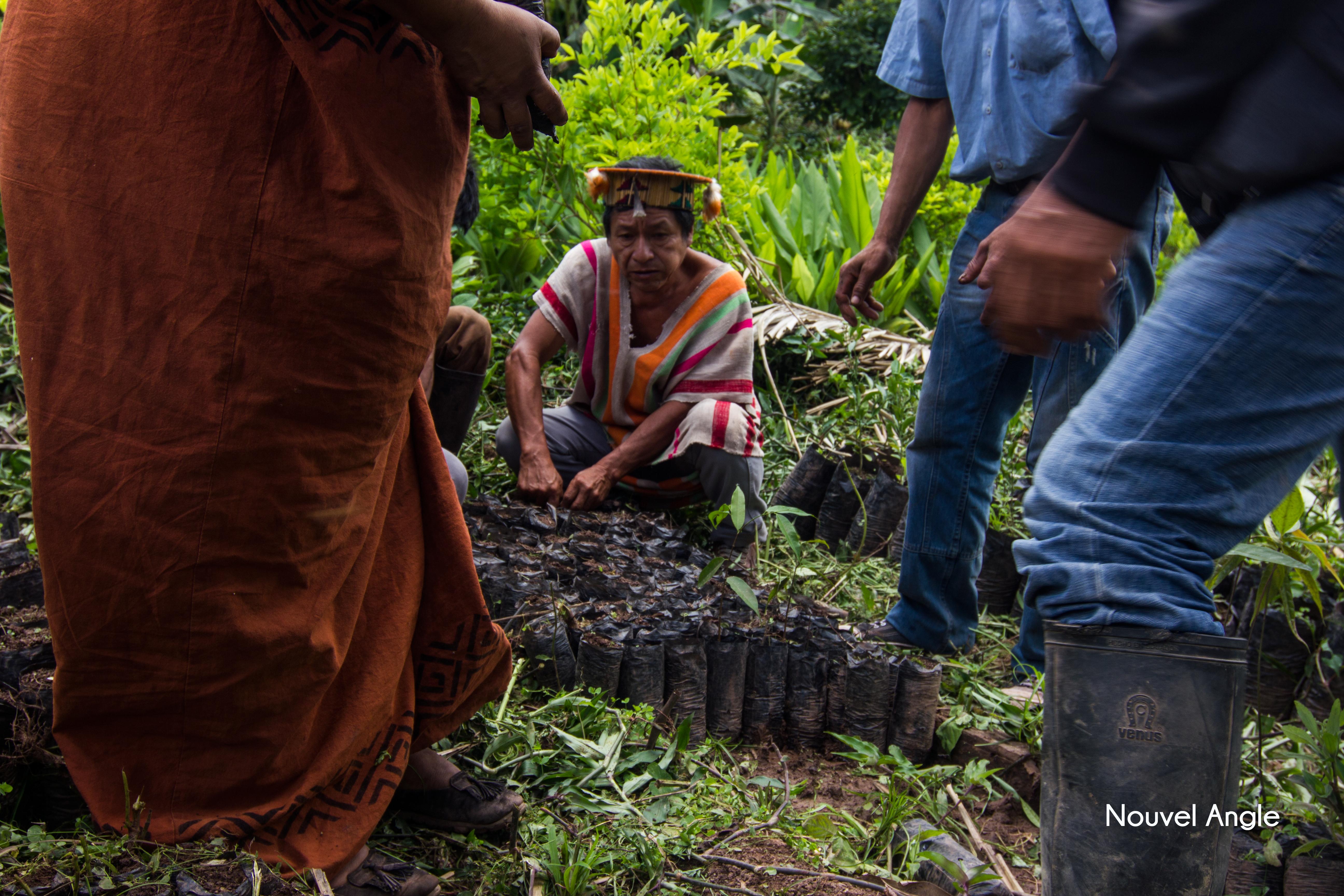 découvrir l'amazonie lors d'un voyage responsable et durable