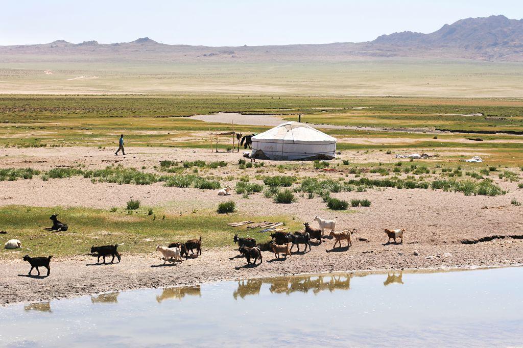 assurance voyage Mongolie : laquelle choisir ? quel visa ?