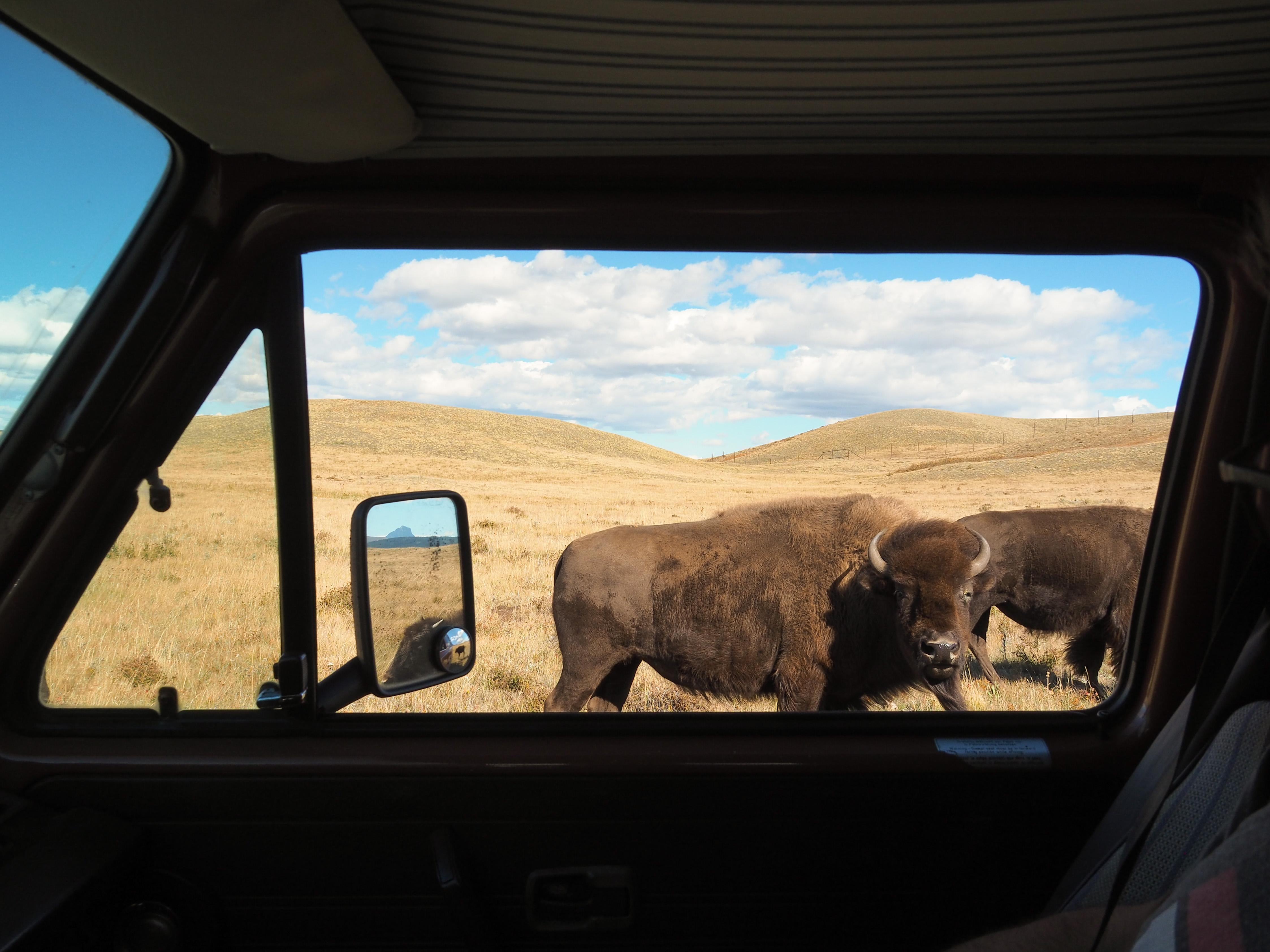 road-trip en camper van aux Etats-Unis et au Canada