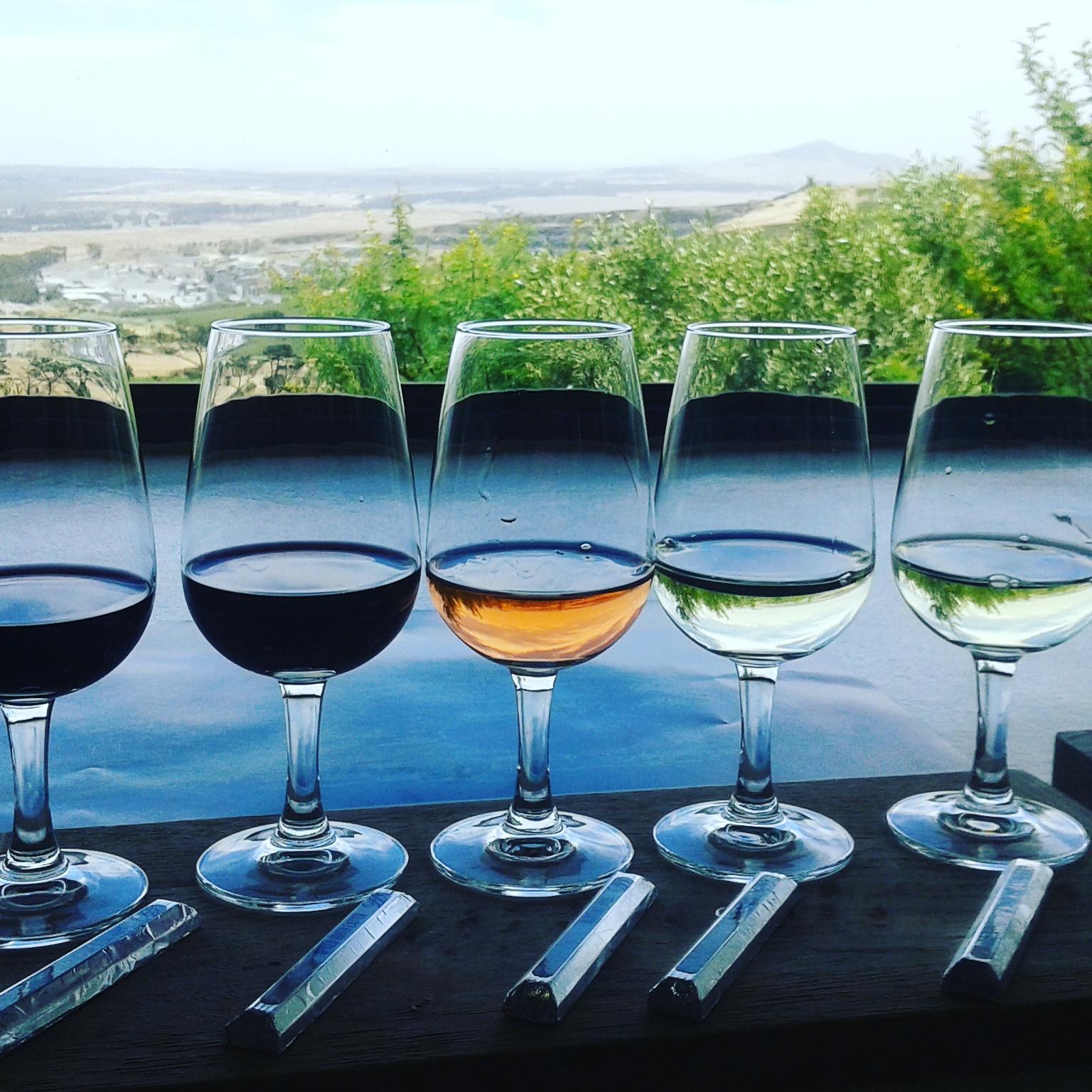 découvrir le vin sudafricain et les vignobles dans la région du cap