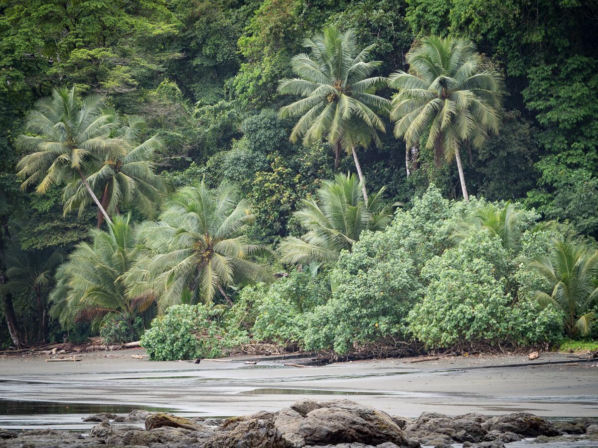 voyage dans le Chocó en Colombie