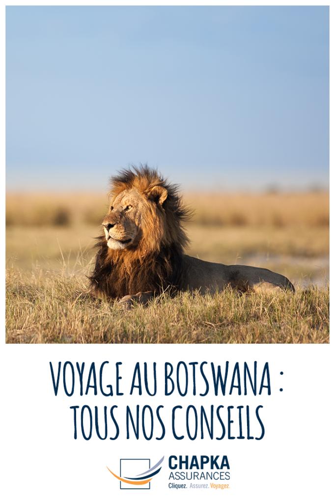 BOTSWANA_VOYAGE_1