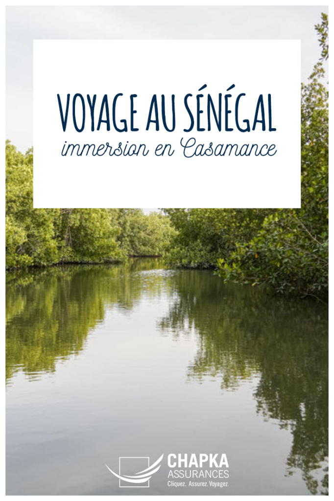 SENEGAL_IMMERSION_CASAMANCE_1