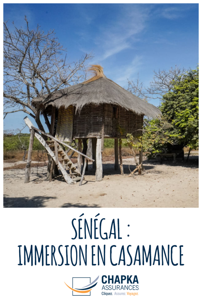 SENEGAL_IMMERSION_CASAMANCE_2