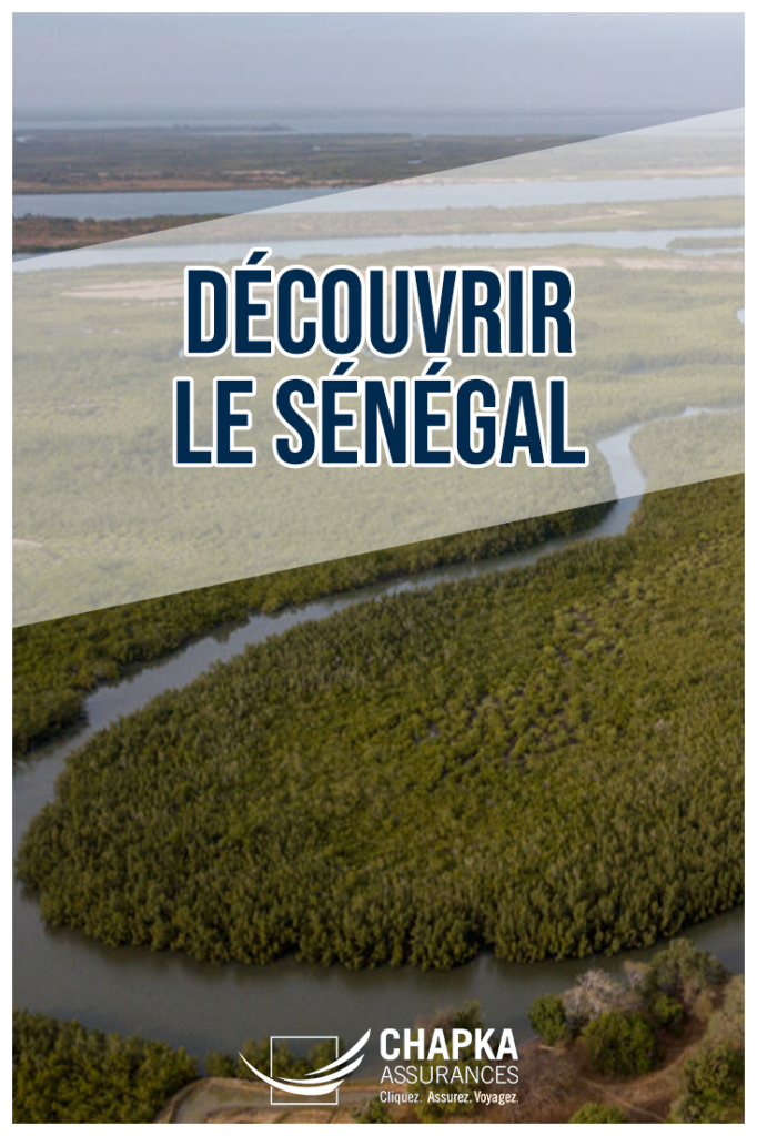 VOYAGE_SENEGAL_1