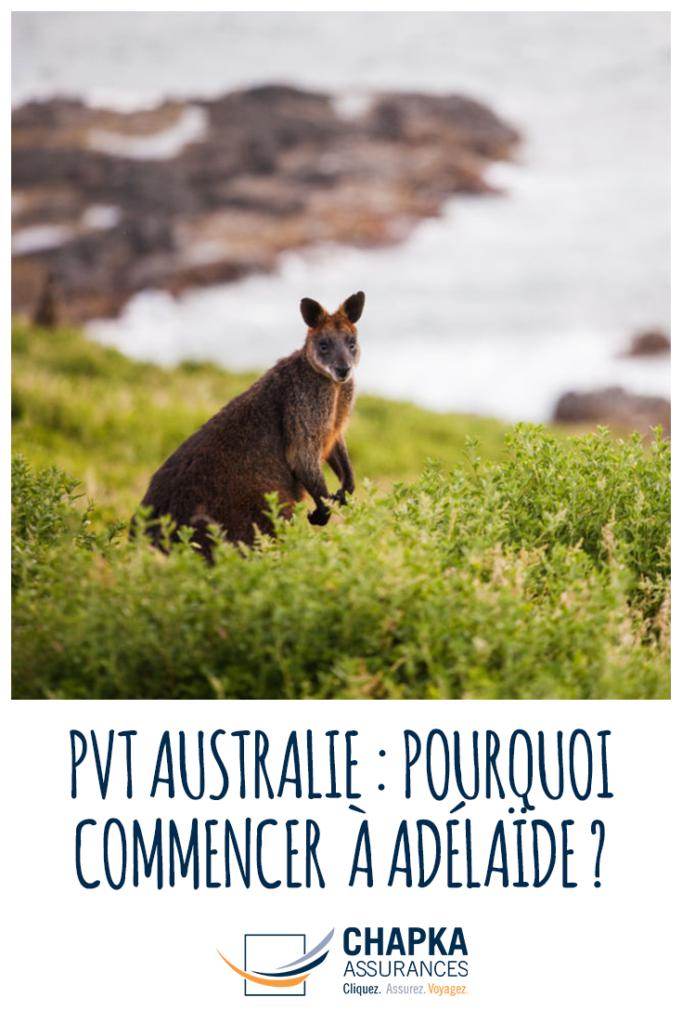 ADELAIDE_COMMENCER_SON_PVT_AUSTRALIE_2