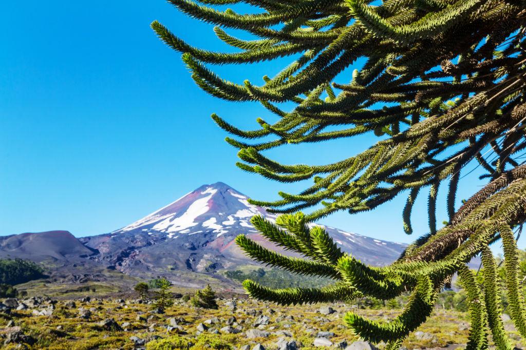 quelle assurance voyage pour des vacances au Chili ?